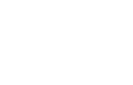 Fiesta Electric